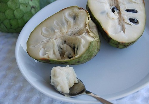 scooping out the cherimoya's flesh