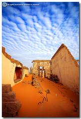 Destroyed (ibrahem N. ALNassar) Tags: canon eos cattle d 5 n l 5d kuwait usm egret ef 1740mm f4    alnassar   anawesomeshot ibrahem