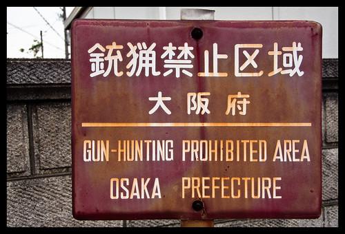 Gun-Hunting