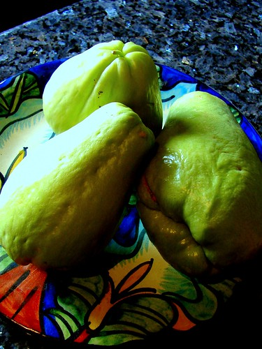 How to cook chayote sqaush