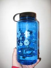 My pretty blue Nalgene bottle