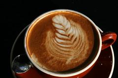 Stumptown Coffee (Dave Lifson) Tags: seattle macro coffee design drink soy latte stumptown project365