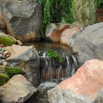 """Beautiful Stream by Greenhaven Landscapes <a style=""""margin-left:10px; font-size:0.8em;"""" href=""""http://www.flickr.com/photos/117326093@N05/12994394795/"""" target=""""_blank"""">@flickr</a>"""