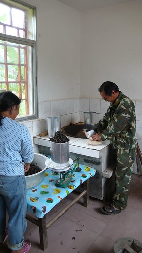 weighing the maocha