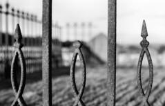 cemetery railings (chapelcross2) Tags: monochrome grey gris scotland pentax k1000 gray grau grayscale ilford greyscale ecosse panf ecossais justpentax ilfosol3