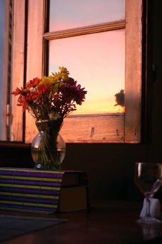 flores ventana 05
