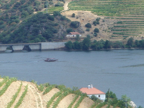 Rabelo Boat in The Douro River