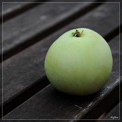 Apfel ohne Ei / Green Apple (digitus_malus) Tags: wood green apple explore nikkor holz apfel gruen d300 rhizome explored malusdomestica klarapfel 1685mmf3556gvr 1685vr