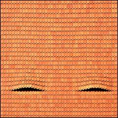 Eyes wide shut (Maerten Prins) Tags: windows roof shadow orange eyes graphic expo yes symmetry tiles schaduw oranje dak tsjechië dakpannen explored winnerflickrsweeklythemecontest oogjesdicht zolderraampjes