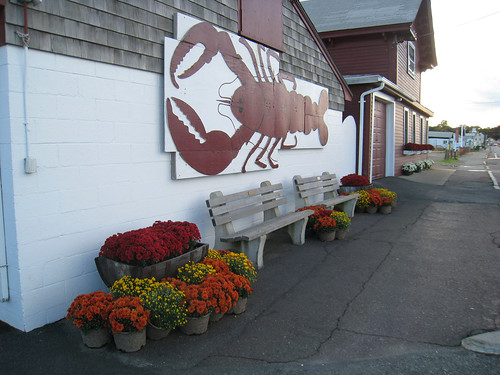 Lobster Sign at Woodman's in Essex, Ma