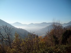 colli euganei vicino Turri (Montegrotto Terme, Veneto, Italy) Photo