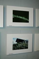 Visualartscontest dicembre 2008 (8) (cristiano carli) Tags: roma fotografia concorso visualartscontest ore20 vacexbit