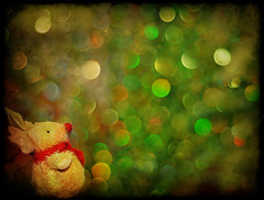 Rudolph watches the bokeh lights (~aspidistra~) Tags: christmas red green texture reindeer nose 50mm nikon bokeh 7 explore blogged rudolph fp ghostbones d90 bokehlicious hggt hbwh