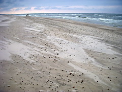 on the beach in czolpino (3) (kexi) Tags: sea wallpaper beach nature water coast nationalpark sand nikon waves wind empty horizon poland balticsea baltic september shore elements coolpix 2008 instantfave kartpostal czolpino slowinskiparknarodowy slowinskinationalpark