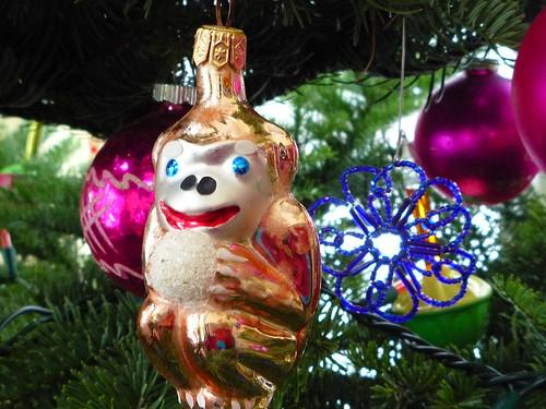 snowball monkey