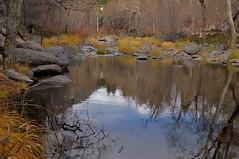 Christmas Eve Oak Creek Canyon_355 (marksontok) Tags: arizona snow water creek river stream icecold oakcreekcanyonaz