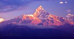 Macchapucchre (Fishtail Mountain) (T   J ) Tags: nepal nikkor pokhara soe fishtail d300 naturesfinest macchapucchre mywinners abigfave teeje