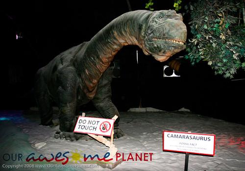 Dino's Alive-24