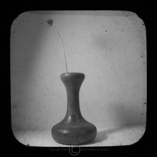 Day 133 - 01/15/2009 Vase B&W TTV