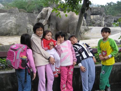 你拍攝的 9與大象合影。