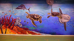 170M2 ocean mural project 06 (Ying-fat's Mural ) Tags: mural wallpaint    yingfatsmural