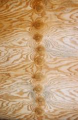 wood (Jacob Seaton) Tags: wood baltimore