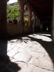 arcos y sombras