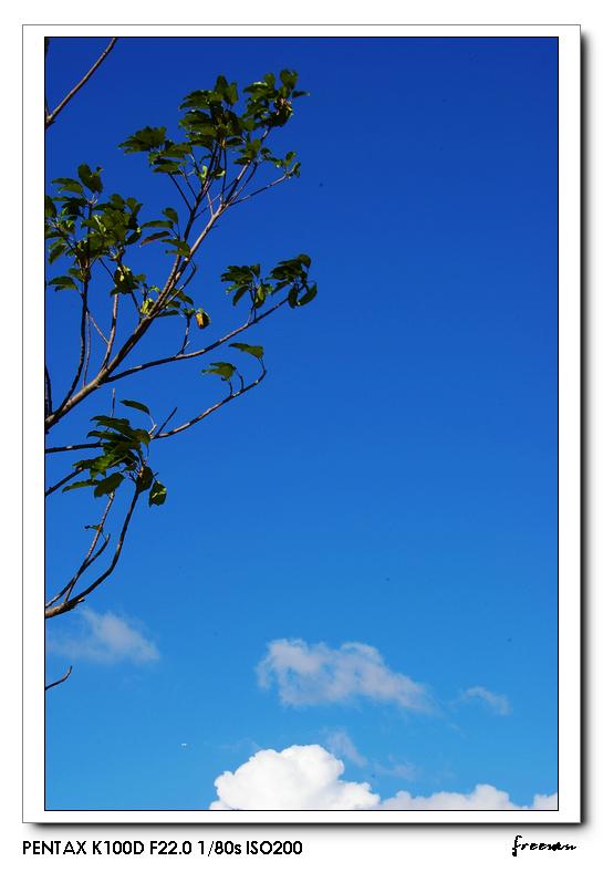 懷念一抹藍的蒼穹