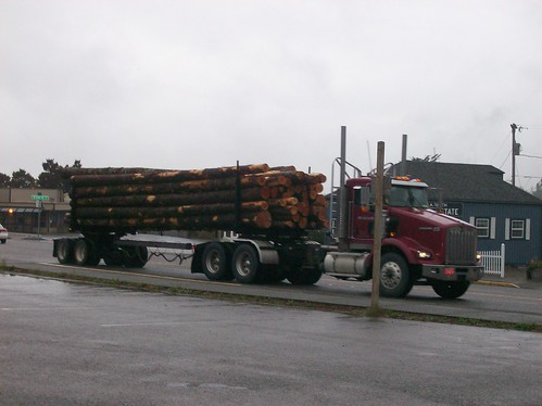 Morning Log Truck