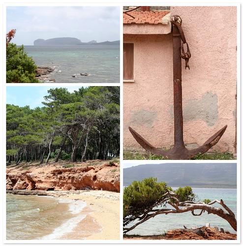 Sardegna (Pineta Mugoni)