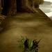 Melon Gear Solid with sadcappella