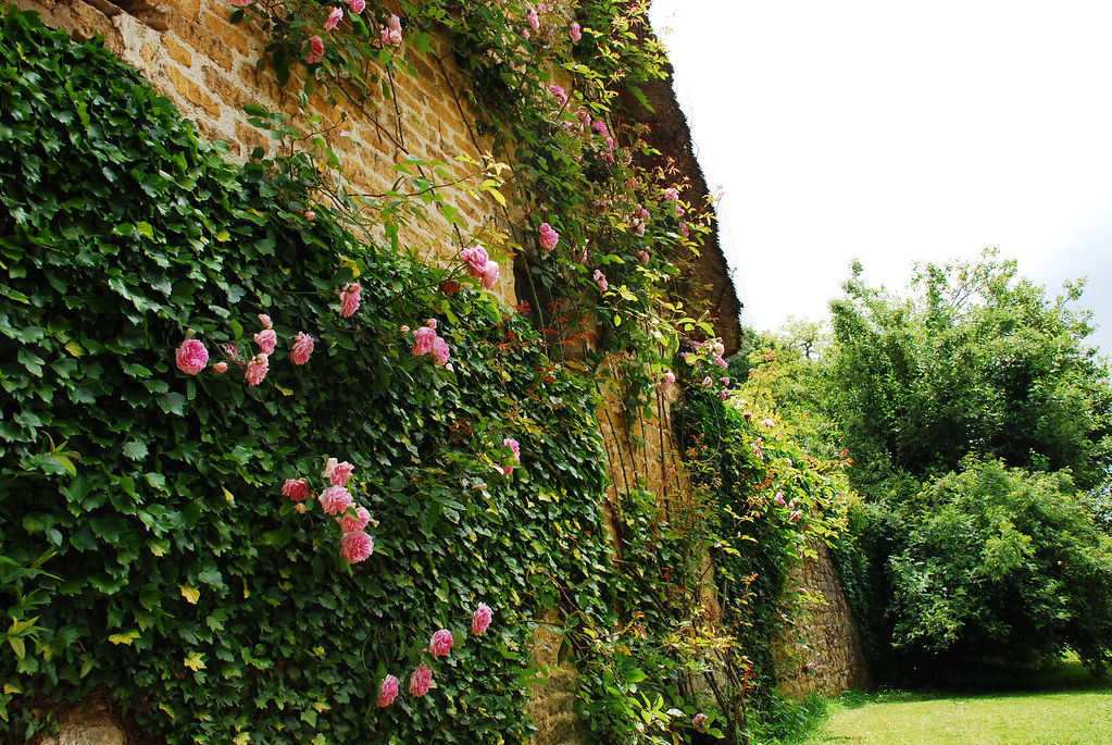 Hidecote Manor Garden 3