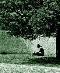 leyendo (Clauminara) Tags: parque verde green méxico mexico arbol reading book mexicocity df reader leer libro paz read pasto universidad autonoma soledad metropolitana ciudaddemexico xochimilco lectura distritofederal lector uam tranquilidad leyendo mejico monart méjico uamx universidadautónomametropolitanaunidadxochimilco