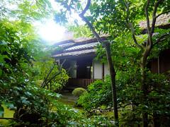 Yoshikien Garden, Nara - Teahouse