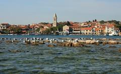 Pakoštane (Yacenty) Tags: sea town croatia adriatic img8459 pakoštane