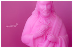 Pink Jesus (renata ) Tags: pink macro canon jesus answers magic8ball hallelujah whatwouldjesusdo havefaith answermejesus wisdomofthelord