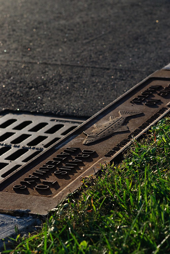 Drains To Waterways