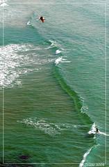 Long wave (kerivoa) Tags: ocean sea nature bretagne breizh armor 29 vagues bzh finistre littoral pointeduraz baiedestrpasss gr34 penarbed sentierdouanier plogoff cledencapsizun