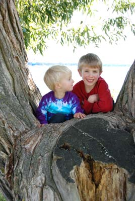 boys in tree