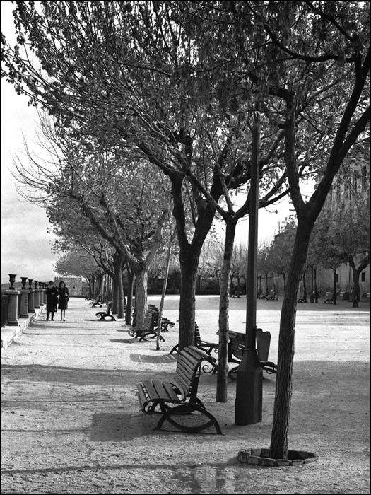 Paseo del Miradero (Toledo). Foto John Fyfe