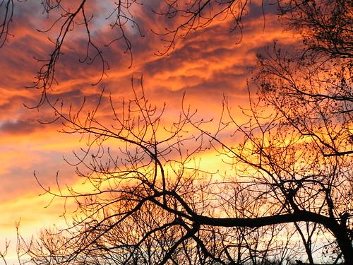 Texas Sunrise