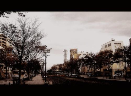 Little_Park