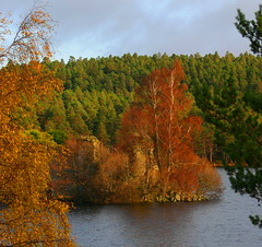 Loch an Eilein Castle Scotland (ralph.stewart) Tags: autumn canon scotland highlands blueribbonwinner rothiemurchusestate lochaneileincastle