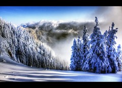 Above all (crymy) Tags: trees winter snow mountains canon raw romania hdr brasov canon1855 poianabrasov 3xp postavaru aplusphoto canoneos40d crymy 40deurope