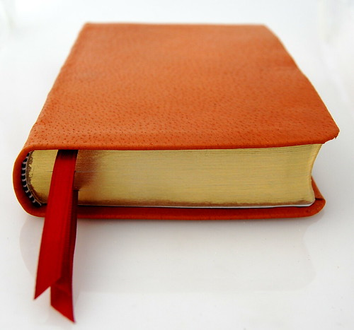 Deluxe Compact ESV in Pigskin - Bottom