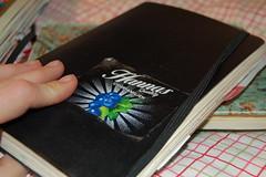 Diary 2008
