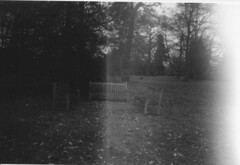 Ghost benches (Sugar Dolly) Tags: trees winter white black leaves kew gardens lomo exposure chairs bare seats overexposed benches streaks stark coloursplash streaky