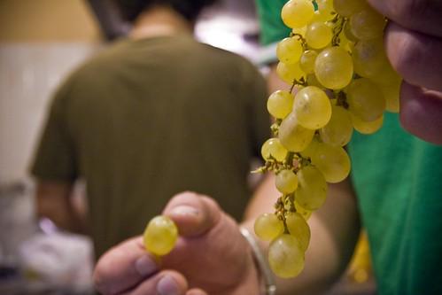 y las uvas..
