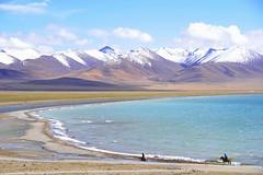 Nam Tso Chukmo (reurinkjan) Tags: nature tibet 2008 changtang namtsochukmo tibetanlandscape storytellingphoto tengrinor visipix janreurink damshungcounty storytellingphotography damgzung nyenchentanglarange     photostorydrapardrung