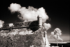 Castillo de San Marcos Bastion 2 (Jamie Powell Sheppard) Tags: blackandwhite bw art film architecture ir photo florida nps fort 17thcentury fineart masonry palmtrees spanish bastion canonae1program staugustine sepiatone watchtower stardesign coquina 50mmlens 35mmslr femalephotographer hc110dilb woodeffect castillodesanmarcosnationalmonument 29darkredfilter kodakhiebwinfrared